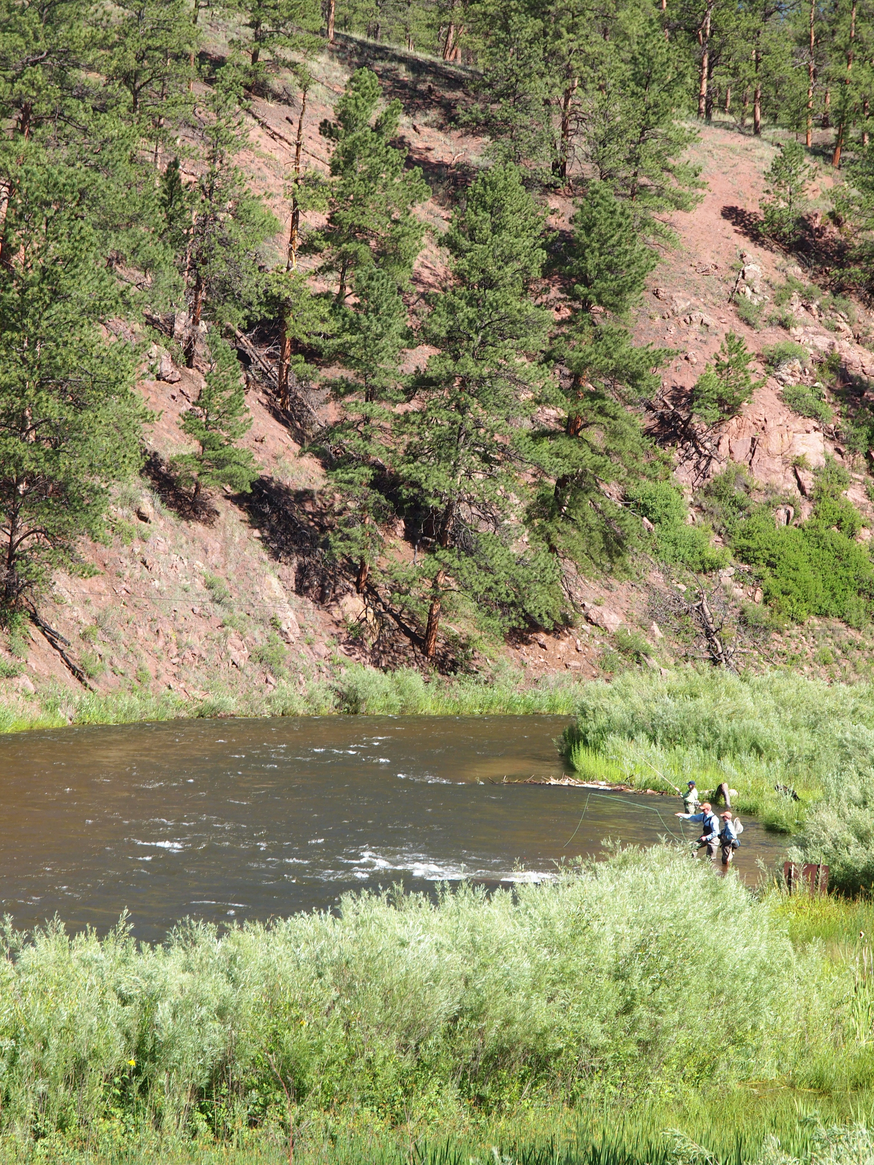 South platte river denver water for South platte river fishing