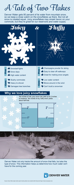 Snowflakes- fluffy vs. juicy