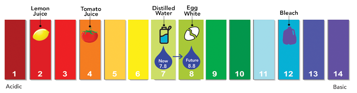 pH scale, which runs from 0 to 14. Right now Denver Water has a target of 7.8. The goal target is 8.8.