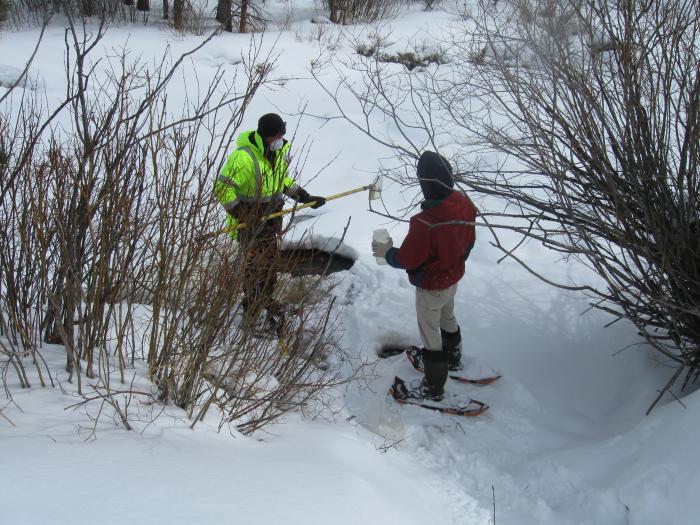 Winter Water Survey