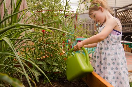 Emmarose watering vegetable garden