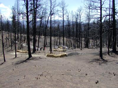 Land near Cheesman Reservoir was severely damaged after the 2002 Hayman Fire.