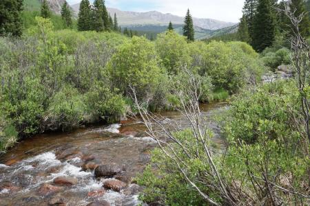 Scott Gomer Creek flows gently from high in the Mount Evans Wilderness Area.