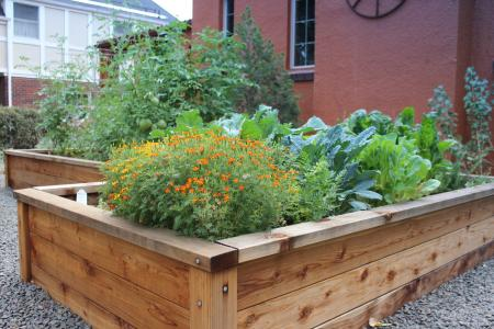 Dinsmore's raised garden beds are proof that a veggie garden can be both beautiful and bountiful.