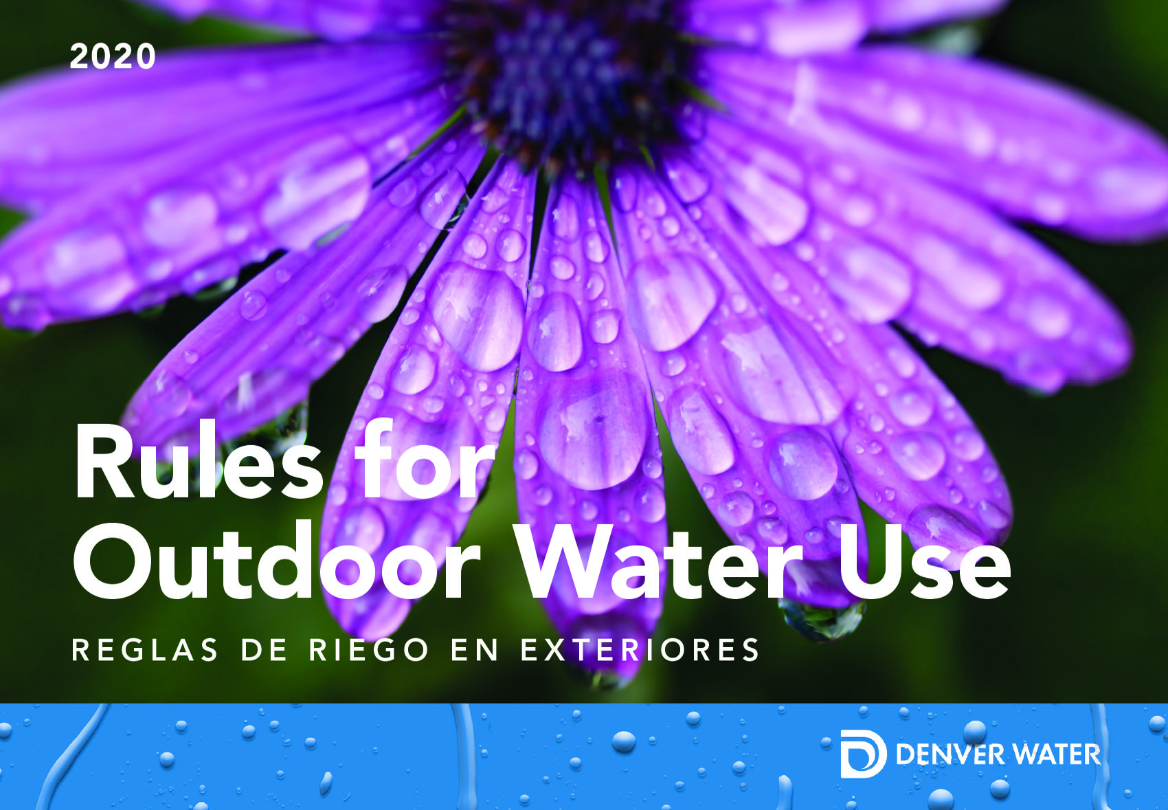 Cover image of the 2020 Summer Watering Rules mailed to customers. Image credit: Denver Water.