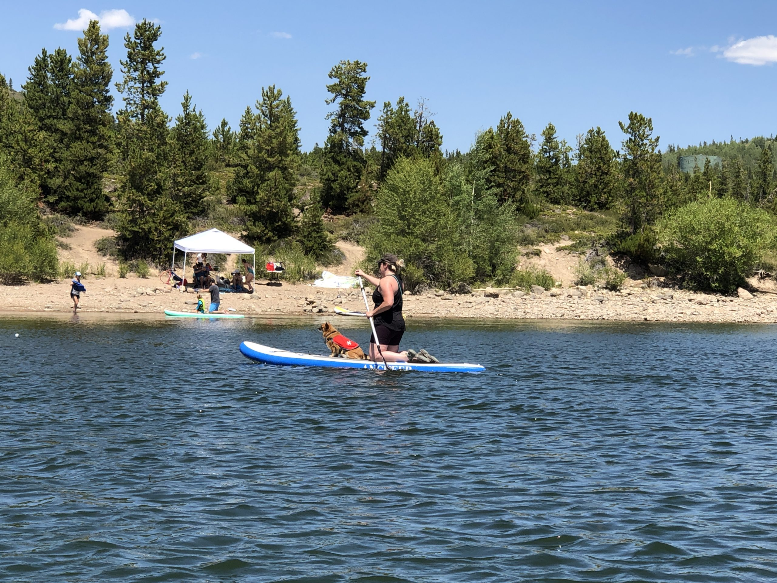 A woman on a paddle board that doesn't have a personal flotation device.