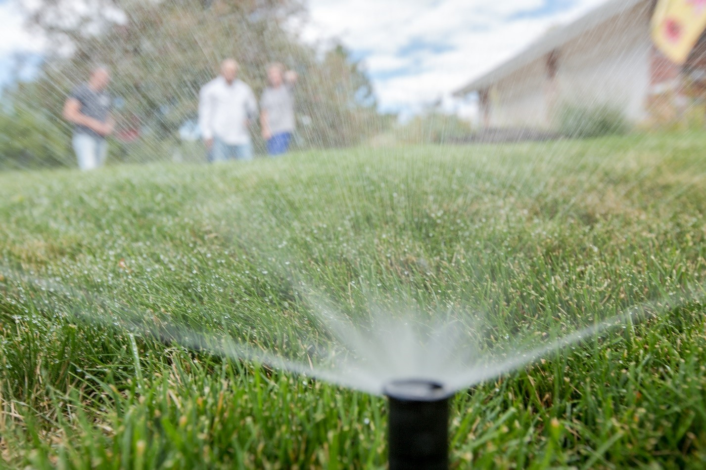 Many customers in Denver Water's service area use 18 gallons per square foot or more to water bluegrass lawns. Experts say only 12 gallons per square foot is required to keep the grass lush and healthy. Photo credit: Denver Water.