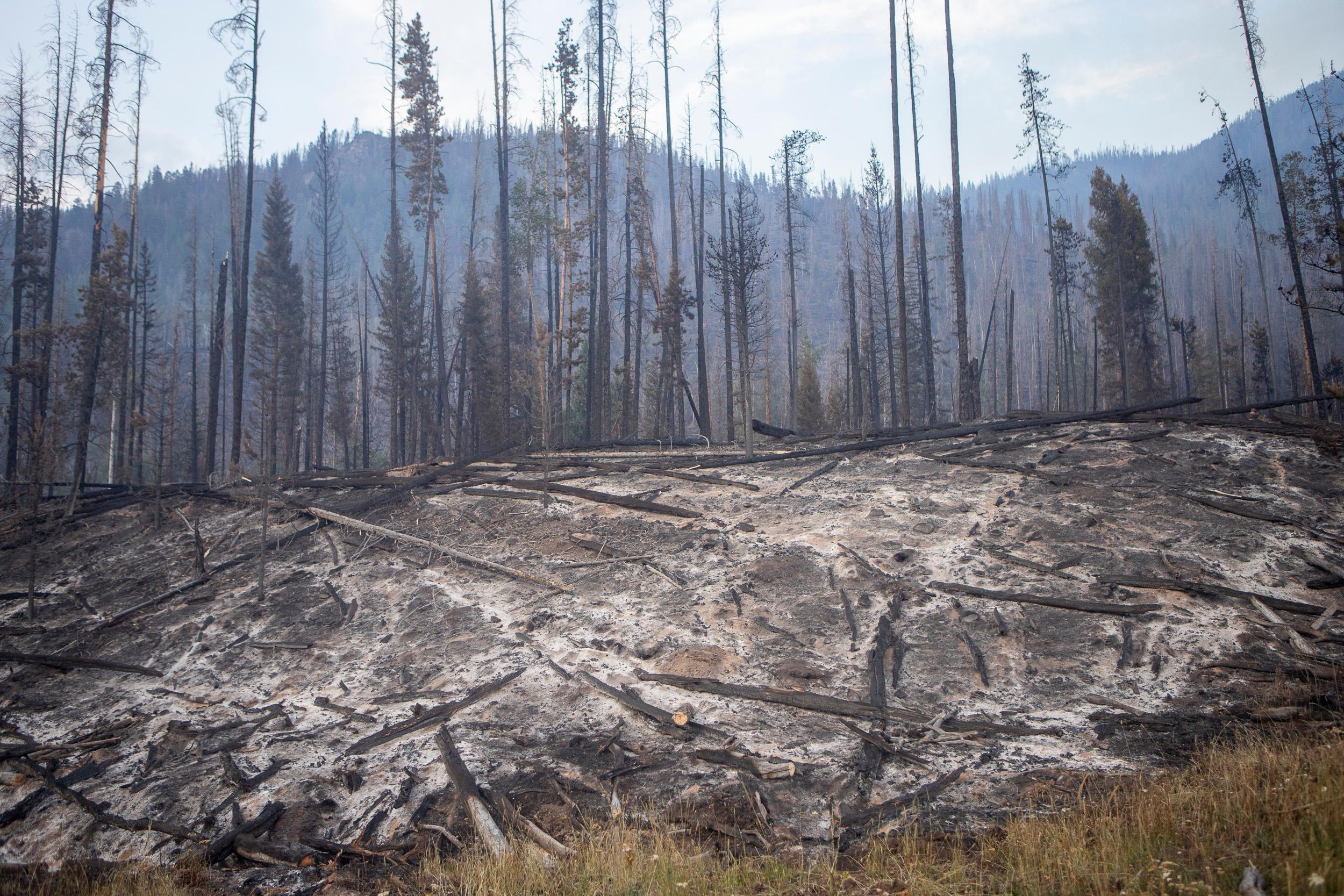 The fire will have long-term impacts on water supply in the Williams Fork River basin. Photo credit: InciWeb.